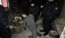 The brutal murder of a man in the Orsha district: the testimony of the accused
